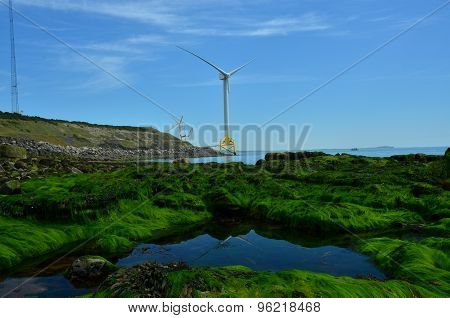 Wind Turbine at Coast