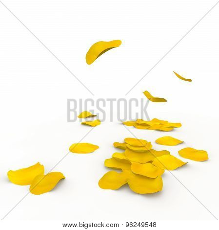 Yellow Rose Petals Fall To The Floor