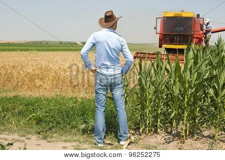 Farmer In Field During Harvest
