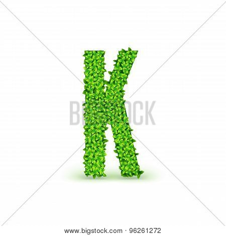 Green Leaves font K.