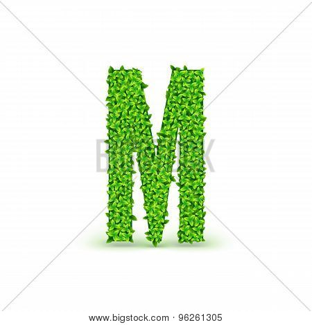 Green Leaves font M.