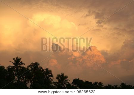 Storm clouds over forest at sunset