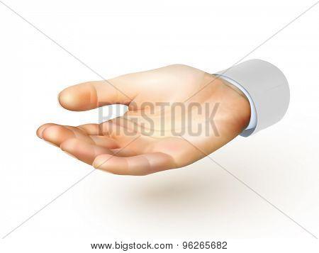hand illustration - vector