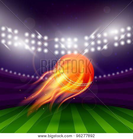 Stadium Of Cricket Night