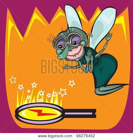 Cute little cartoon fly insect