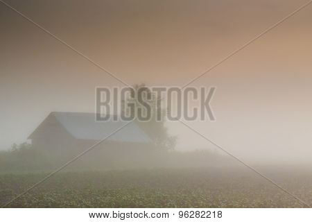 Barn In Heavy Mist