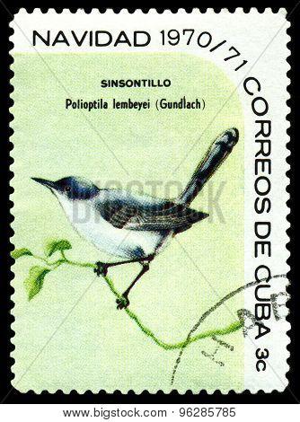 Vintage  Postage Stamp.  Bird  Cuban Gnatcatcher.