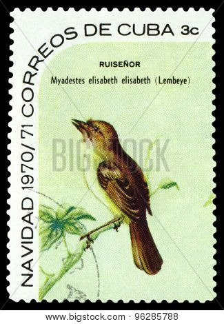 Vintage  Postage Stamp.  Bird  Cuban Hermit Thrushi.
