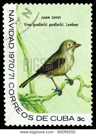 Vintage  Postage Stamp.  Bird  Cuban Vireo.