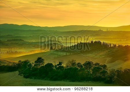 Siena, Rolling Hills On Sunset. Rural Landscape With Cypress Trees. Tuscany, Italy