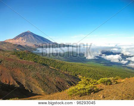 Teide lookout