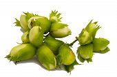 image of hazelnut  - green hazelnut isolated on the white background - JPG
