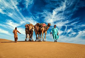 stock photo of camel  - Rajasthan travel background  - JPG