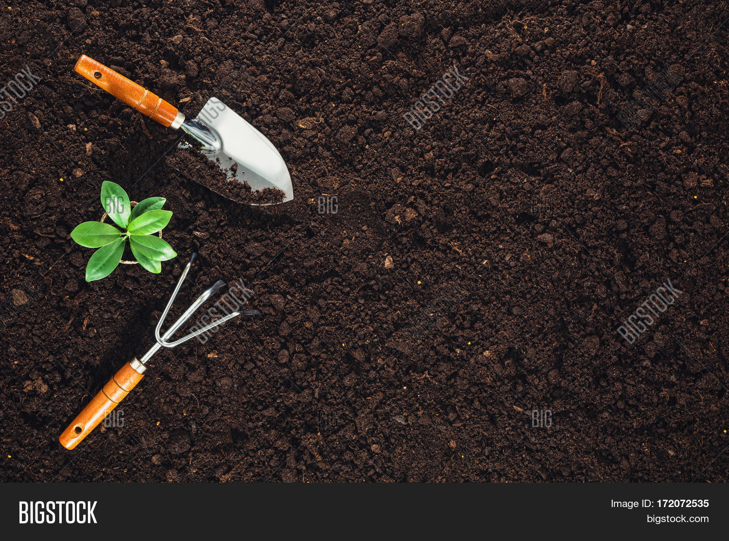Gardening tools on fertile soil image photo bigstock for Gardening tools used in planting