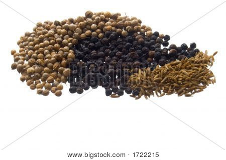 Spice Seeds