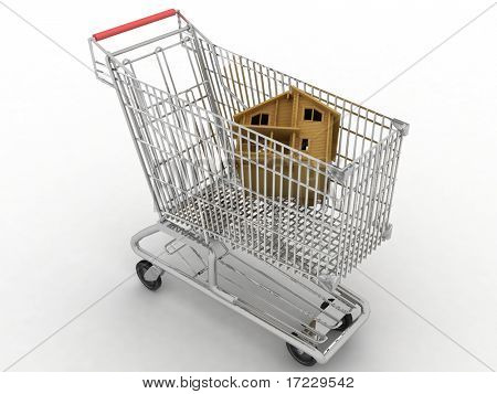 light cart of supermarket with the model of house