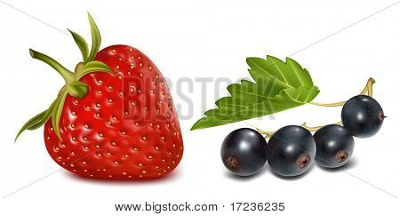 Photo-realistic vector illustration. Strawberry and black currants with leaves.