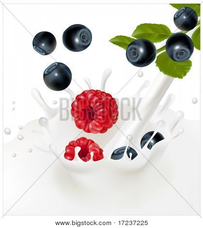 Vector illustration. Ripe blueberries and raspberries falling into the milky splash. Background for design of packing yoghurt. Forest berries.