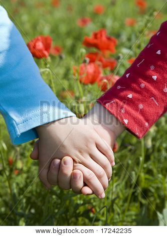 hands of little girls on the meadow