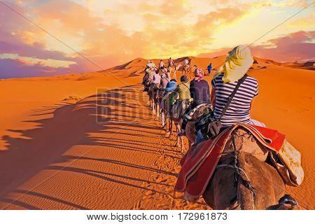 Camel caravan going through the