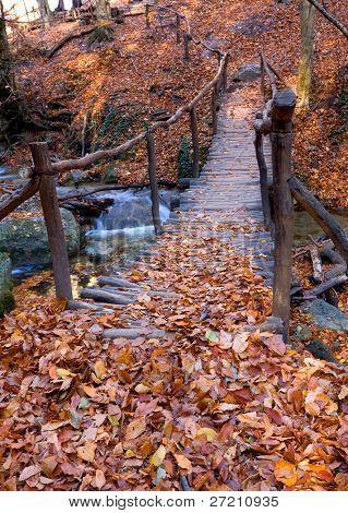 Autumn landscape with wooden bridge across brook