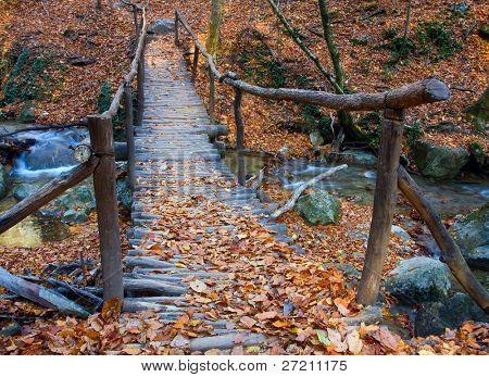 Wooden bridge over brook in autumn forest