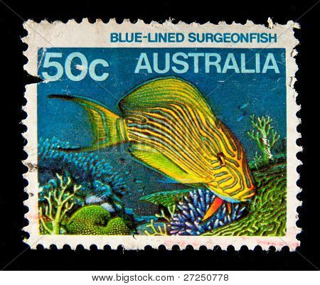 AUSTRALIA - CIRCA 1984: A stamp printed in Australia shows image of a blue-lined surgeonfish, series, circa 1984