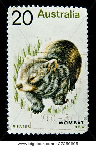 AUSTRALIA - CIRCA 1990s: A stamp printed in Australia shows image of a Wombat, circa 1990s
