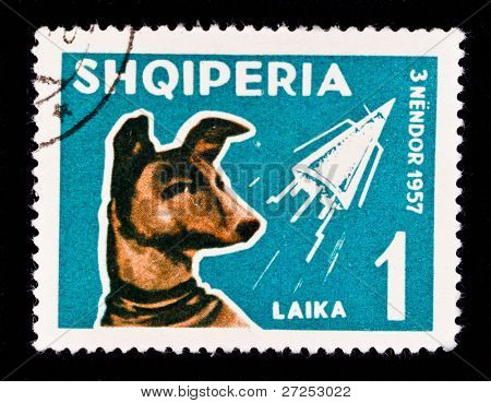 ALBANIA - CIRCA 1957: A stamp printed in Albania showing first animal in space - the dog Laika, circa 1957