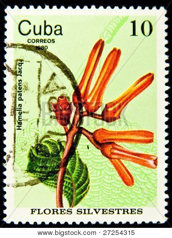CUBA - CIRCA 1980: A Stamp shows image of a Flower with the inscription
