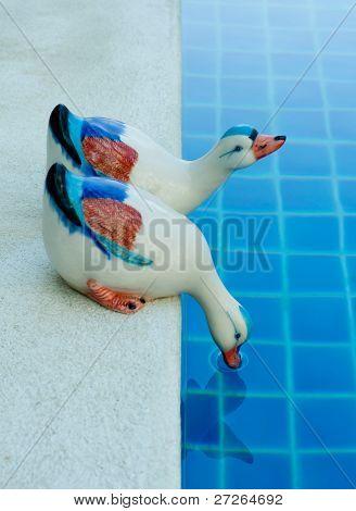 two ceramic duck