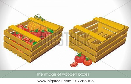 Empty crate and a box of tomatoes and pumpkin, isolated on white background. Vector illustration.