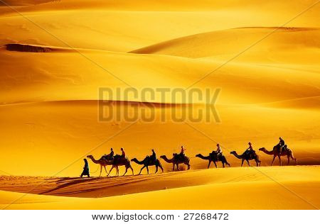 Caravana del desierto