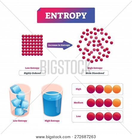 Entropy Vector Illustration Diagram With