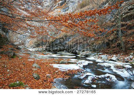 Autumn landscape in the Occidental Carpathians, Romania