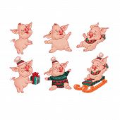Set Of Cute Comic Cheerful Pigs. Pig In Hat. Pig Sits On Gift Box. Pig On Sled. Piglet Laughs And Fe poster