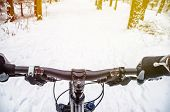 First-person View Of Cyclist In The Winter Forest. Wnter Mountain Bike Concept poster