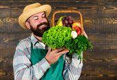 Farmer With Homegrown Vegetables In Basket. Man Bearded Farmer Presenting Eco Vegetables Wooden Back poster