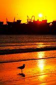 foto of asilah  - Sunset light in Asilah Harbor - JPG