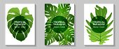 Tropical Paradise Leaves Vector Covers Set. Cool Floral A4 Design. Exotic Tropic Plant Leaf Vector.  poster