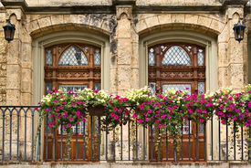 pic of flower pot  - Two doors Gothic style balcony with flower pots in Sigmaringen castle Germany - JPG