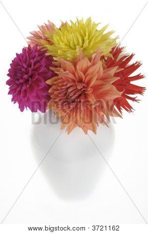 Dahlias In A Vase