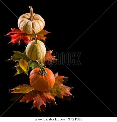 Harvest Time Decorations