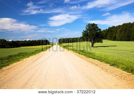 The Rural Road