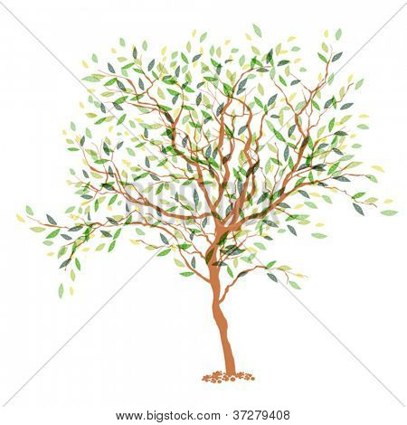 Tree. The trunk and leaves in separate layers. Vector illustration, EPS10.