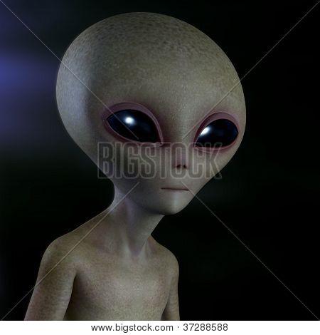 Alien gris