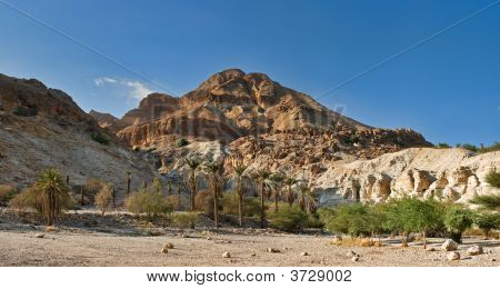 Red Mountain In Ein Gedi National Park, Israel