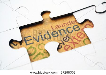 Evidence Puzzle Concept