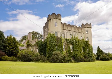 Irish Medieval Castle - Rear View