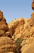 pic of tozeur  - View of the mountain of the Chebika oasis in Tunisia - JPG